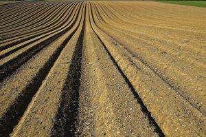 Obrábanie pôdy v lete aj v zime
